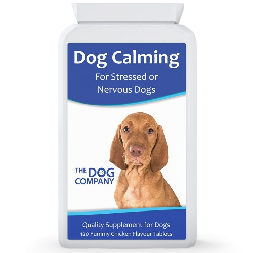 Pet Calmer | Reduce Stress from Noise, Travel & Isolation